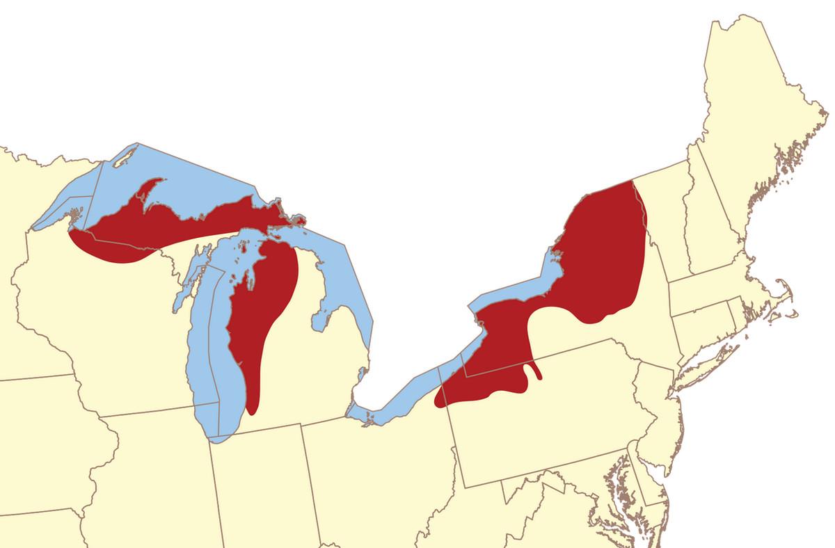 lake effect map