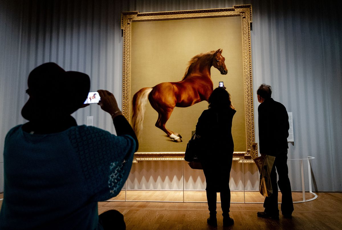 Museum patrons consider George Stubbs' life-size painting of Whistlejacket, an 18th-century racehorse.