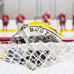 Boston Pride Goaltender Brittany Ott's goalie mask art during a game against the Metropolitan Riveters
