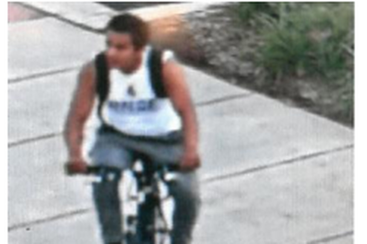 Police are looking for a suspect wanted for sexually assaulting a 19-year-old woman in Palatine on July 13, 2019.