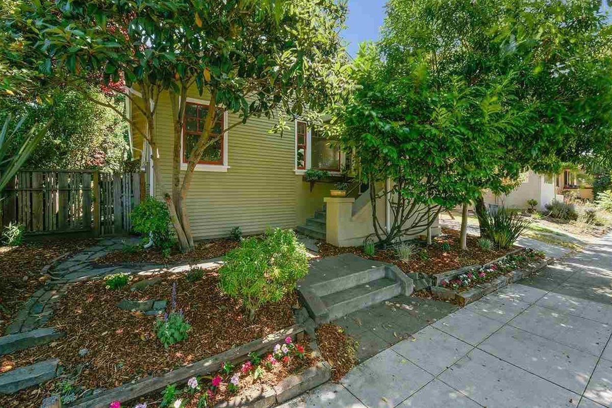 A small green cottage hidden by trees in Berkeley.