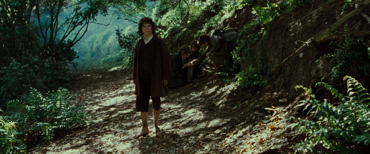 Frodo stands on a path through a forest in The Lord of the Rings: The Fellowship of the Ring