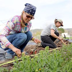 Christina Stanley, collective plots coordinator for Rose Park Community Garden, and Susan Finlayson, program director for Wasatch Community Gardens, measure out plots at the Rose Park Community Garden in Salt Lake City on Monday, April 17, 2017.