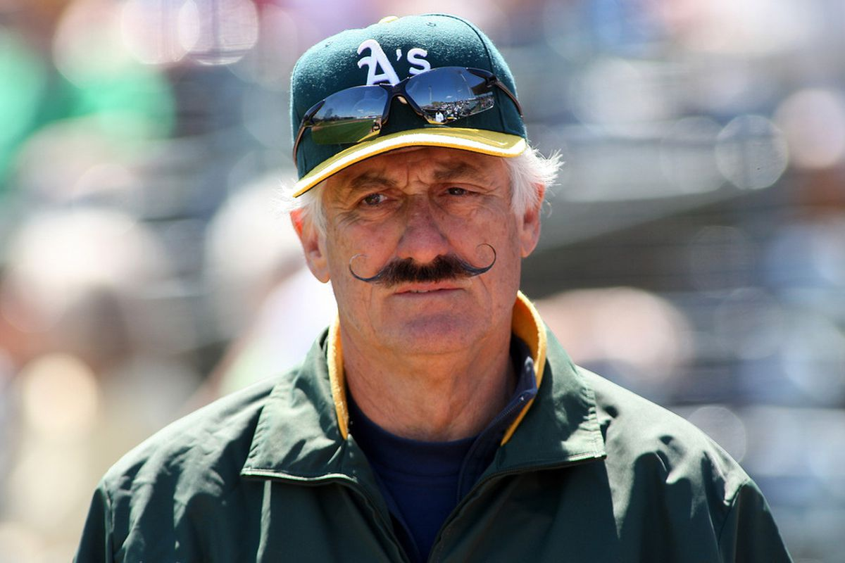 Lustrous doesn't even begin to describe the stache