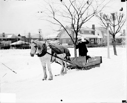 Image of a horse pulling a man who is standing in a milk delivery sled, through thesnowinChicago,Illinois. In the background are several large, single family homes, trees and a street light.
