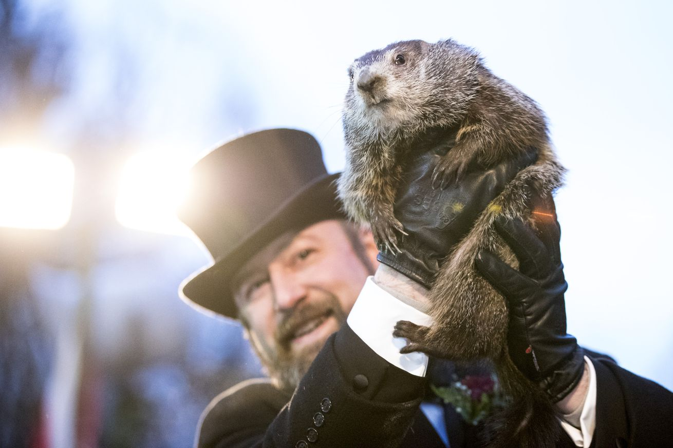 DAMMIT PHIL THIS ISN'T A DEFENSIVE TACKLE IT'S A MARMOT