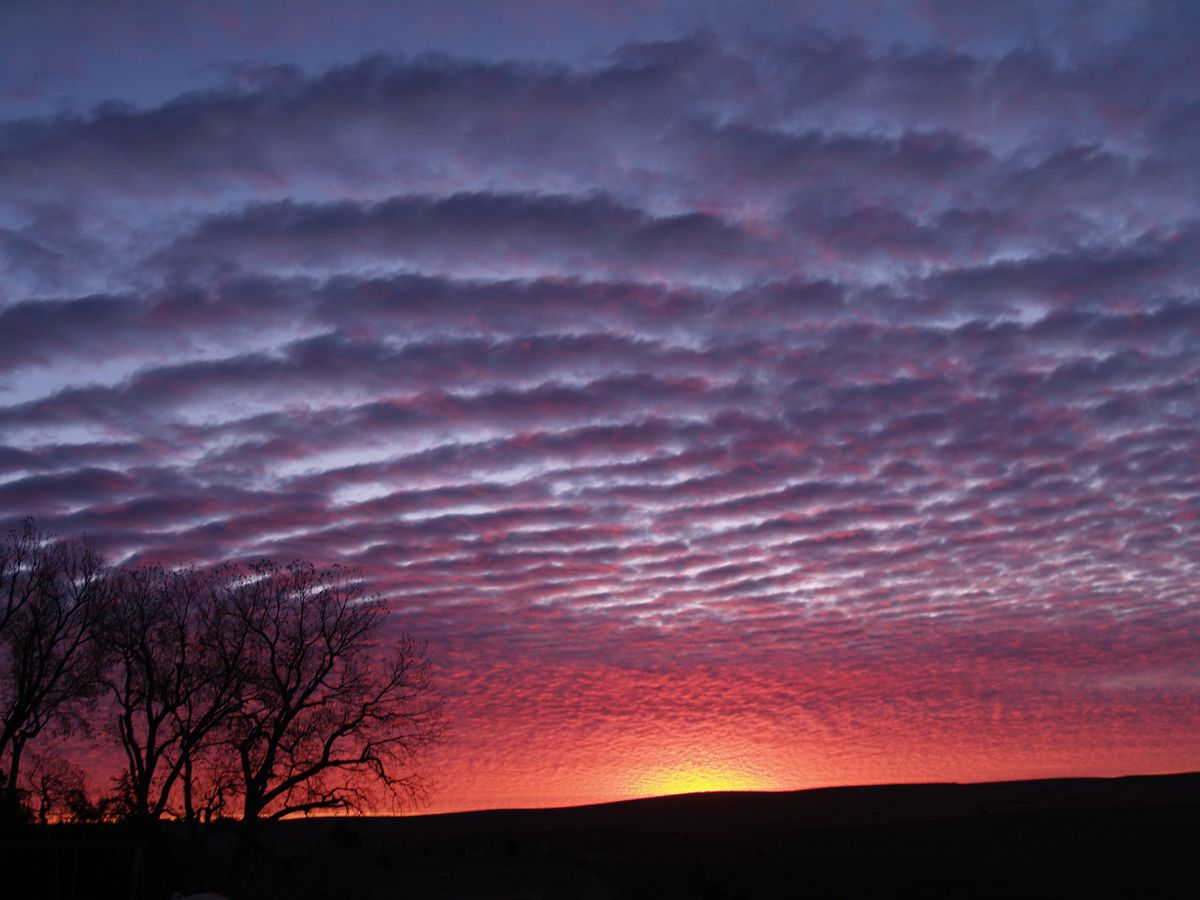 spectacular sunrise in purple and pink