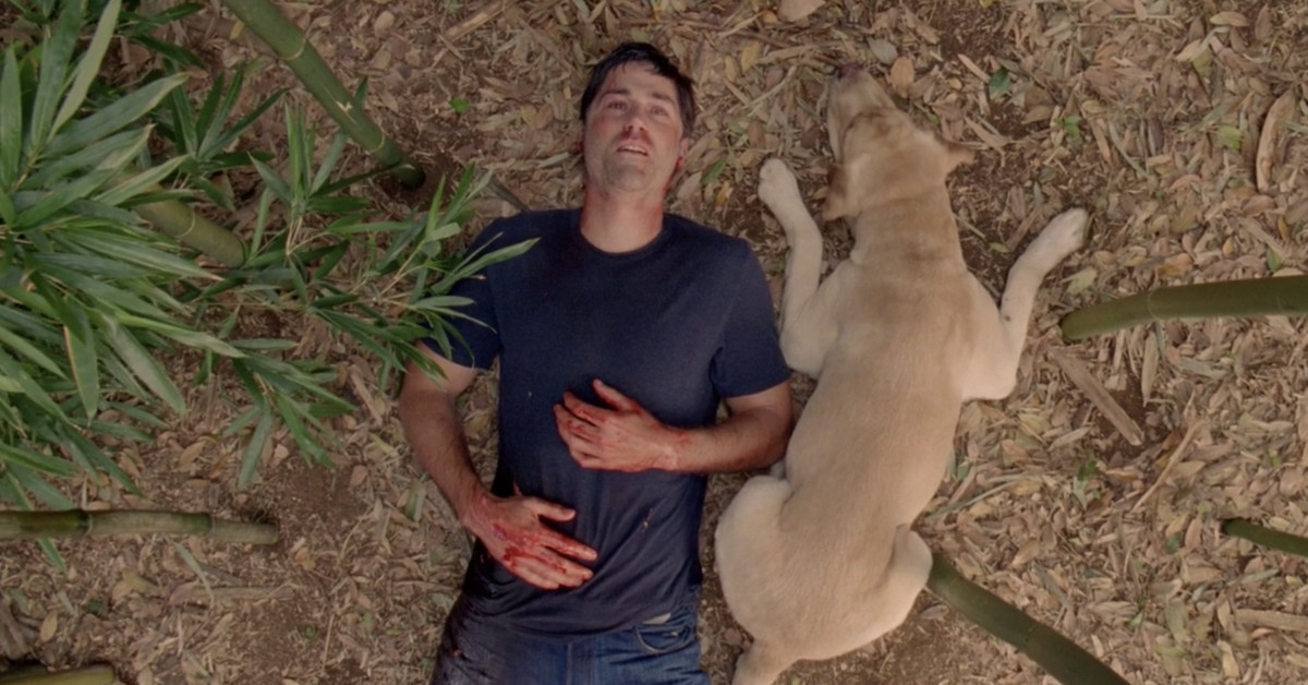 Image result for lost series finale
