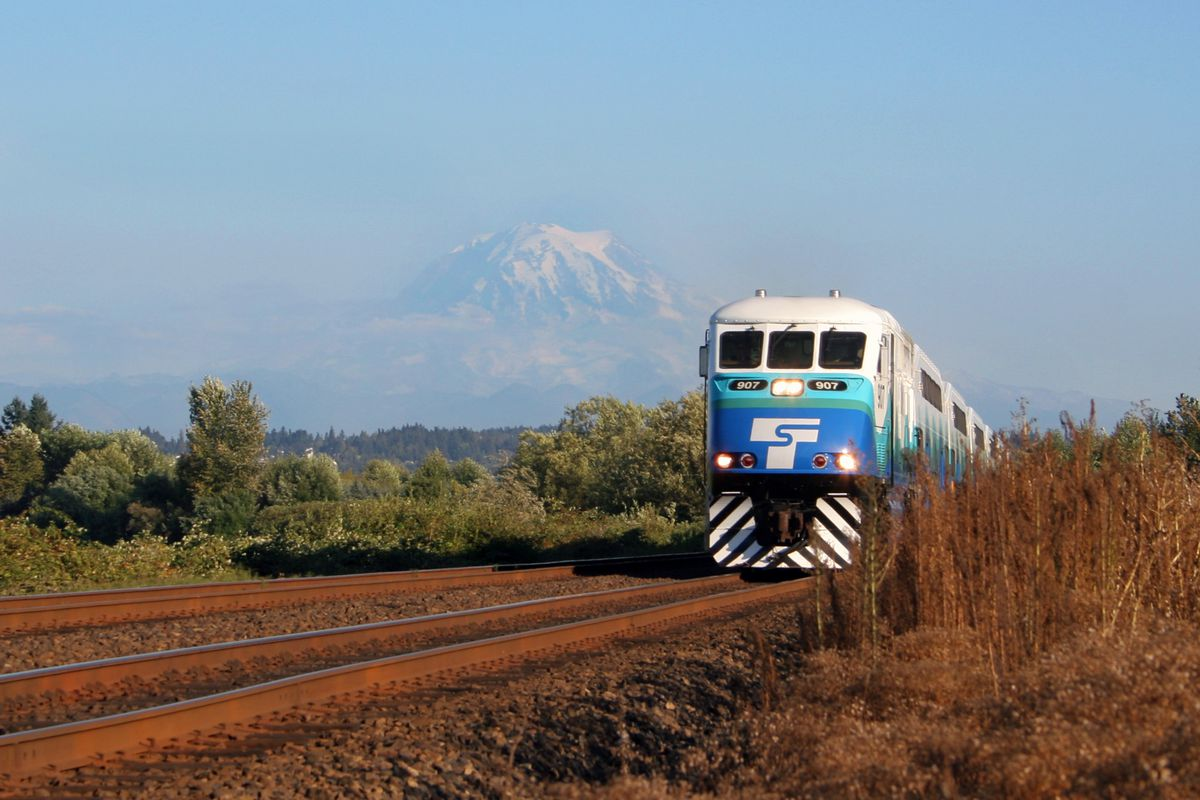 On a sunny day, a blue-and-white train runs on tracks amid low foliage with a view of a mountain in the background.