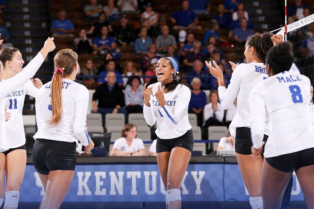 Uk Volleyball Set To Face Washington Huskies In Ncaa Tournament A Sea Of Blue