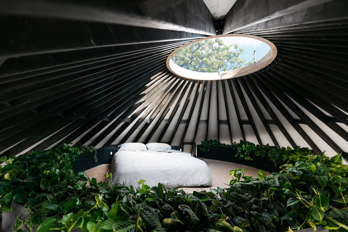 The upper lofted bed area of a yurt features dark timbers on a white background, a circular skylight, and a white bed surrounded by greenery.