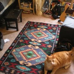 This is the rug that Laena says provided so much artistic inspiration.
