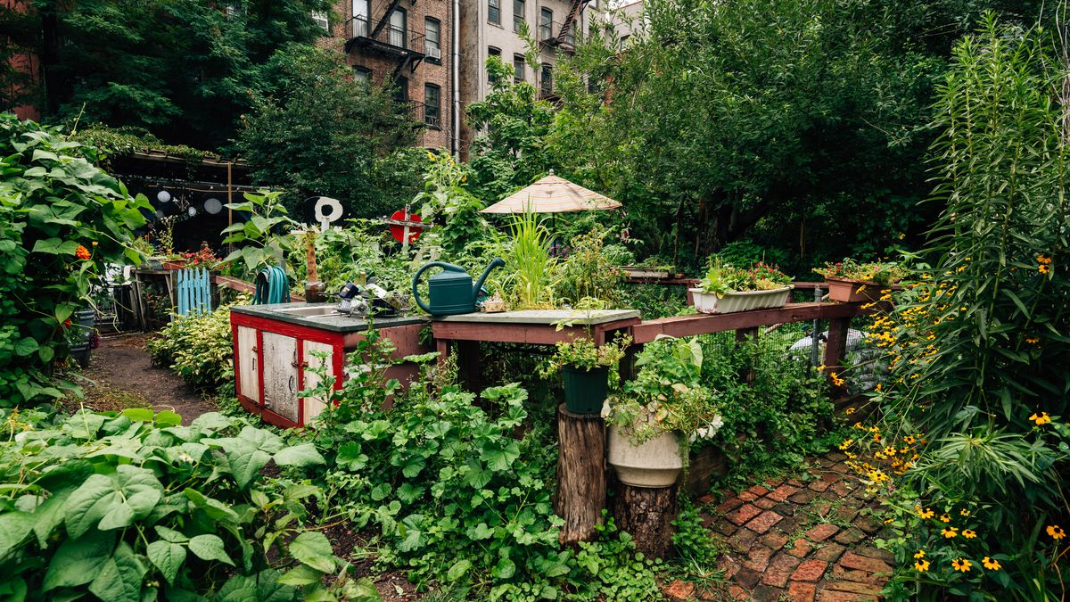 Can An Urban Agriculture Plan Cultivate Nyc S Community Gardens Curbed Ny