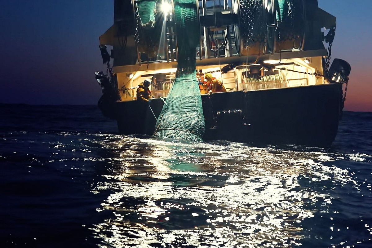 A fishing vessel on the ocean at night.