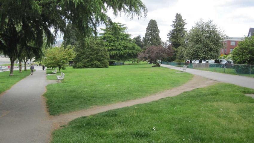 desire path 2