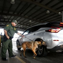 Border Patrol agent Alfonso Villaguerte's K9 dog searches for drugs and humans at the Javier Vega Jr. Checkpoint in Sarita, Texas, on Wednesday, June 23, 2021.