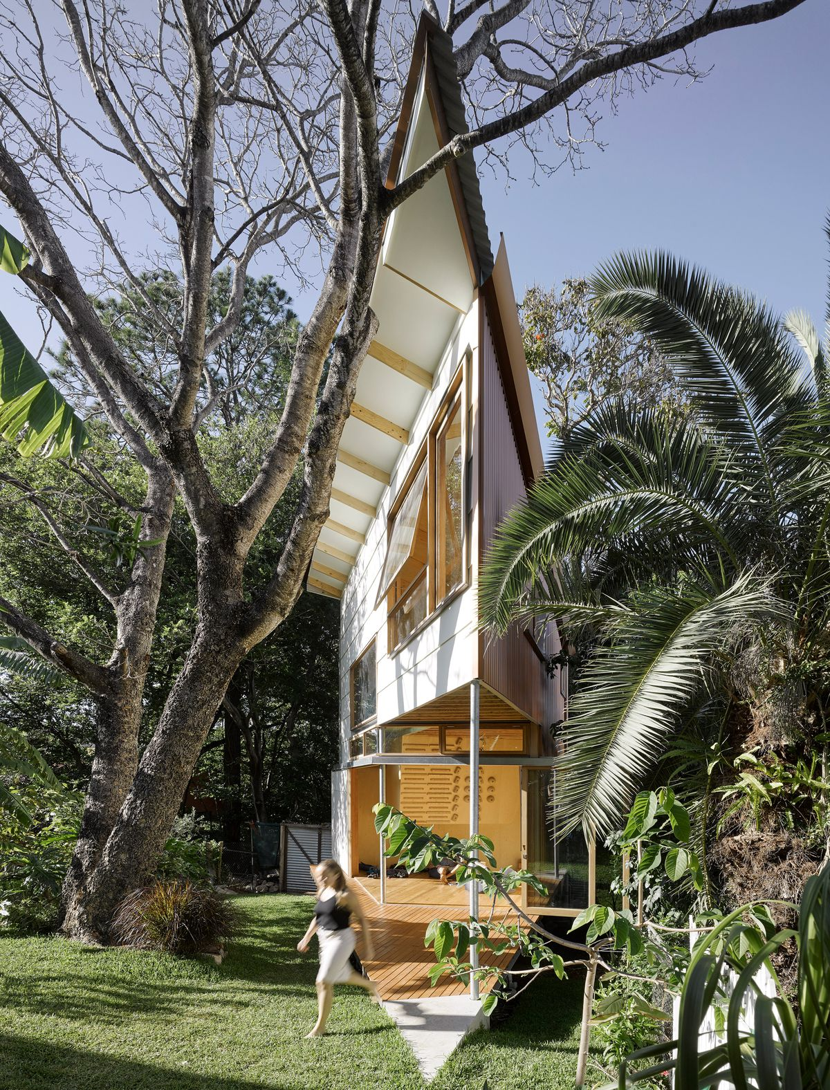 Tiny Home Meets Treehouse In This Angular Backyard Extension Curbed