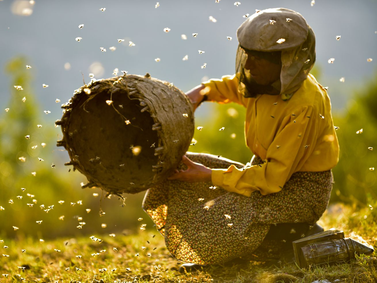 Movie review: It's clear why 'Honeyland' received a lot of buzz at Sundance