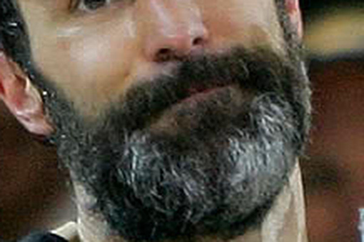 Scott Niedermayer's playoff beard, 2007.