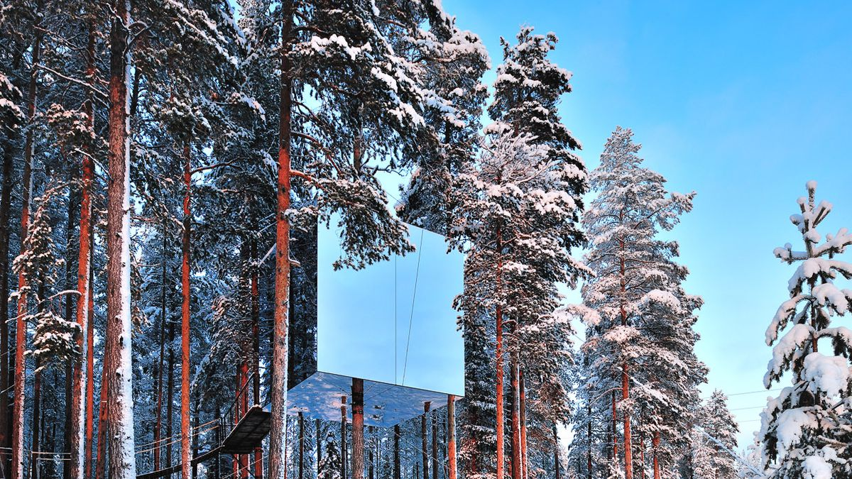 This Treehouse Hotel Offers A Literal Birds Eye View Of Sweden
