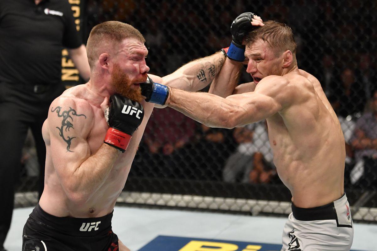UFC Auckland in Tweets: Pros react to Dan Hooker's split ...