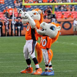 Broncos mascot Miles and Mini-Miles pump up the crowd before the players come out to the field.