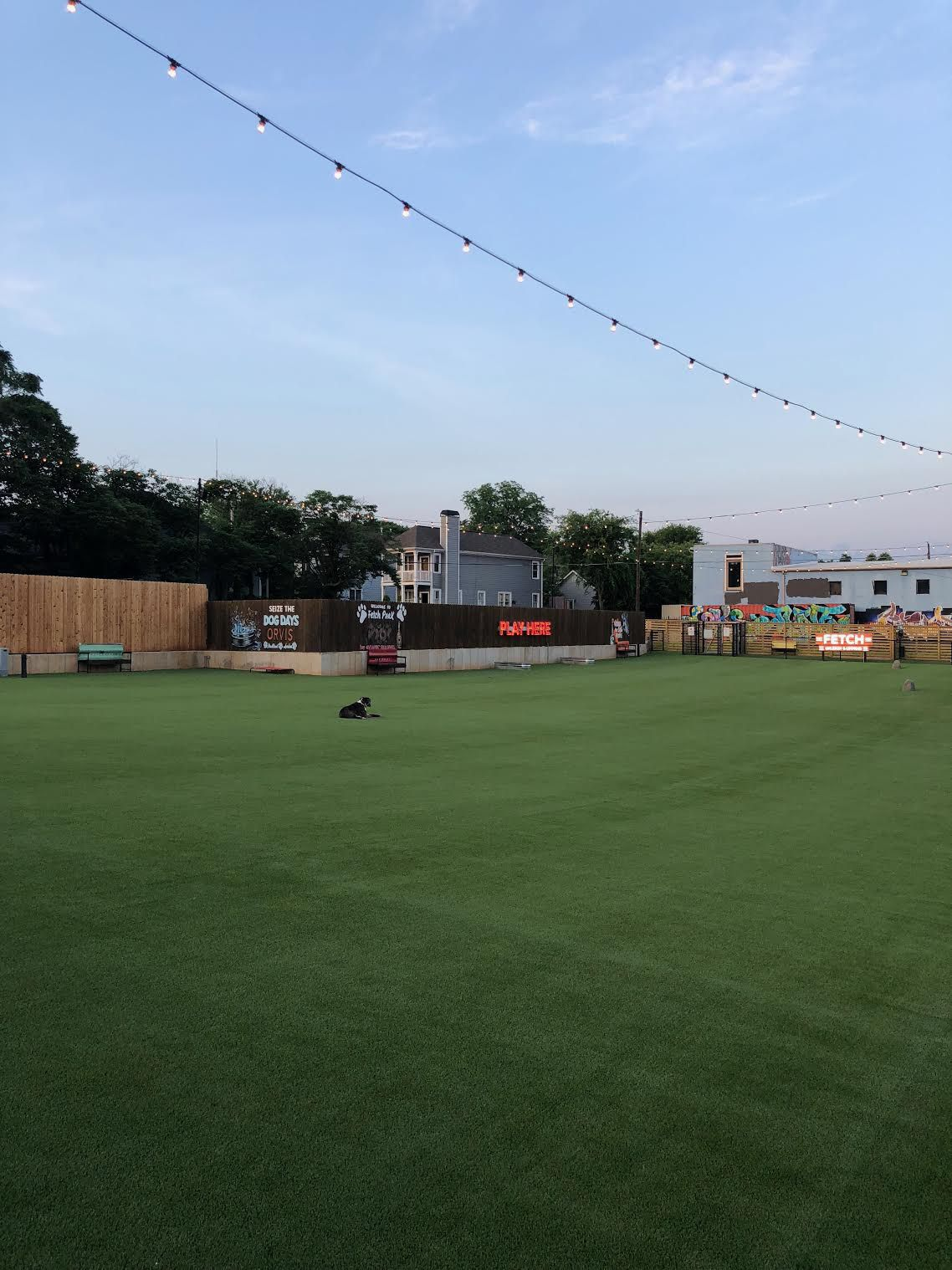 A photo of the spacious lawn.