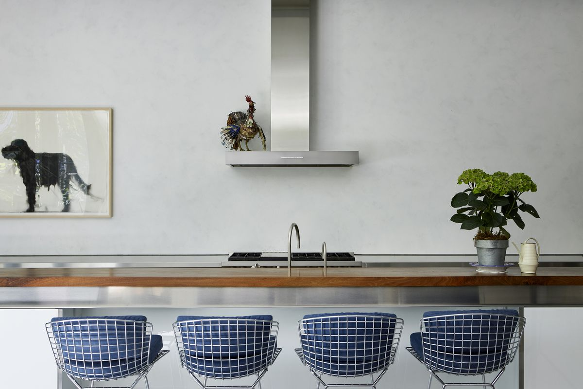 A kitchen has all the storage below the counter; instead, there's a piece of art showing a black dog above the counter.