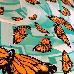 Erni Vales' Monarch butterflies.