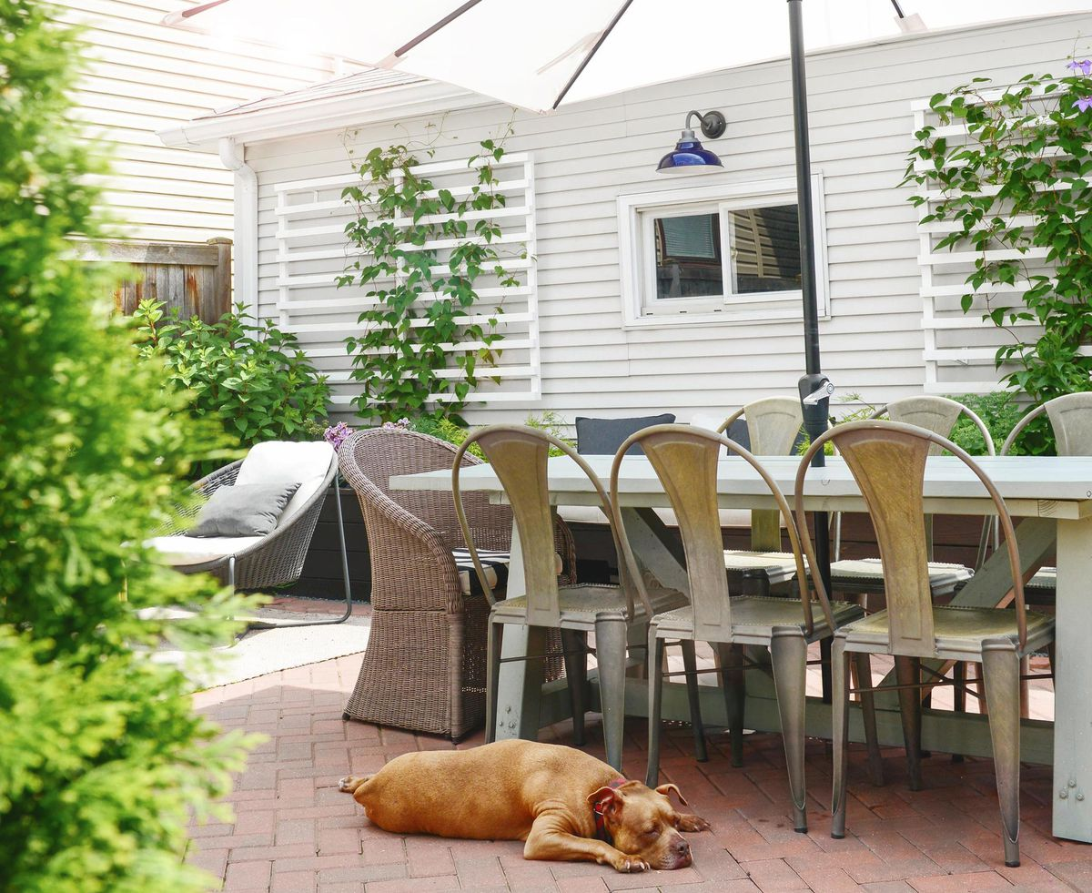 Summer 2021 Outdoor Rooms, Yellow Brick Home, outdoor dining area, dog lying on the pavers