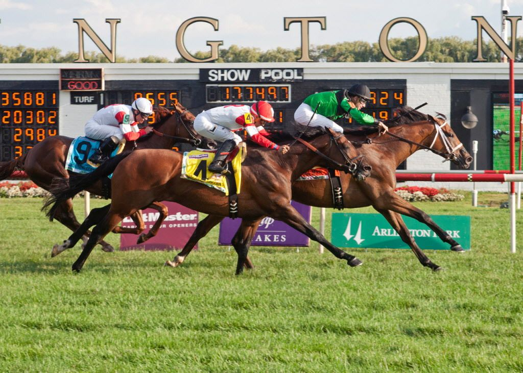 The Arlington Million (pictured in 2015).