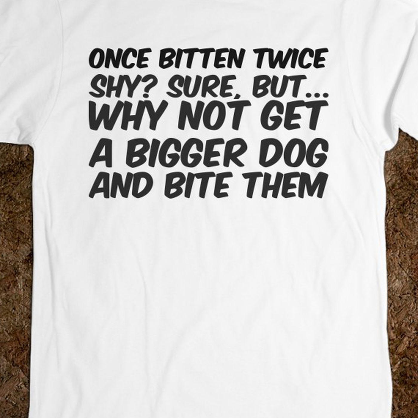 once bitten twice shy idiom