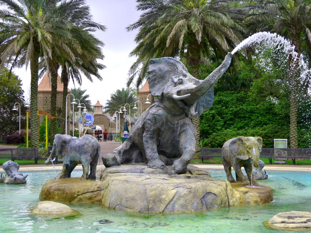 A fountain at the Audubon Zoo. There are large sculptures of elephants. The fountain is surrounded by palm trees.