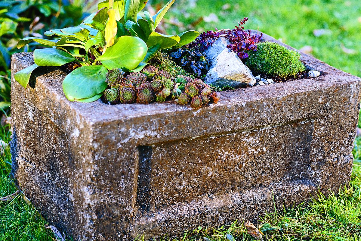 How To Make A Hypertufa Garden Trough This Old House