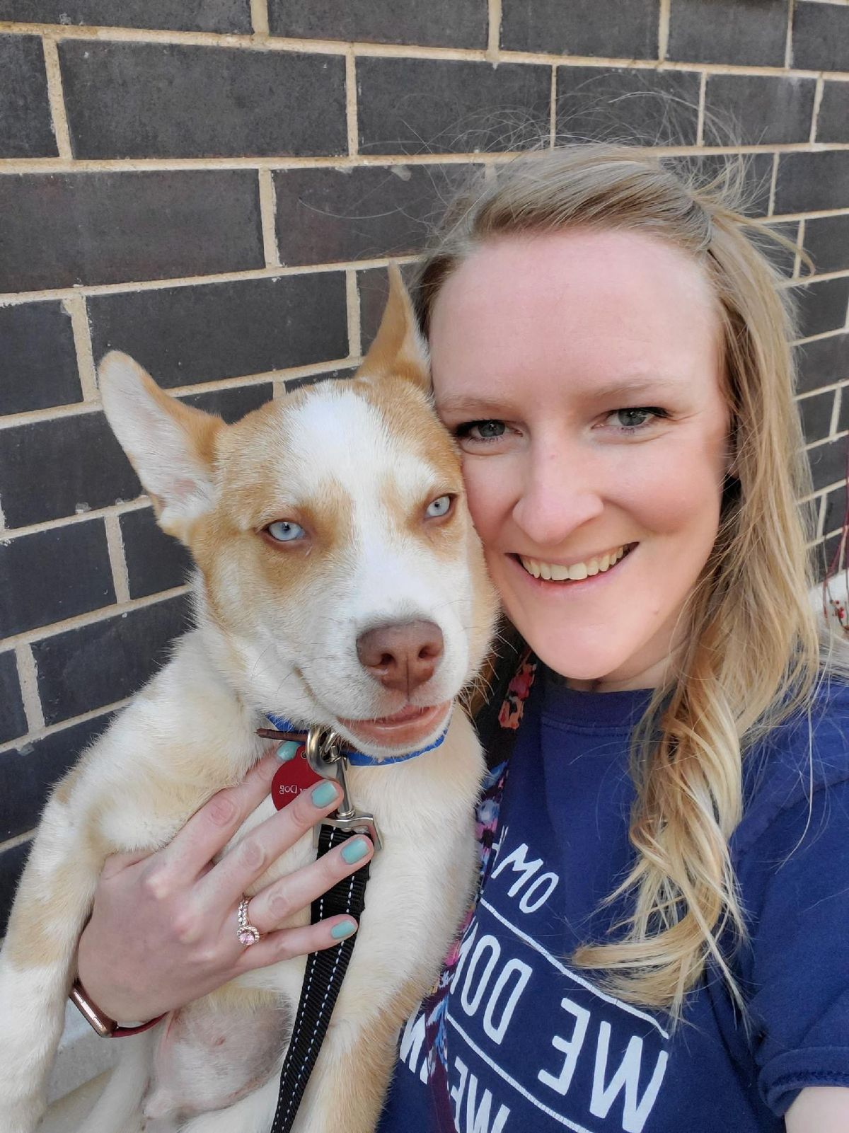 Erin Wuebben Suelter with Sky Blue, one of two mixed-breed huskies from The Anti-Cruelty Society that she is fostering.