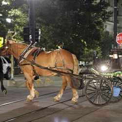 The spooked horse is led away as emergency officials clean up after Saturday's accident involving a run-away horse in downtown Salt Lake.