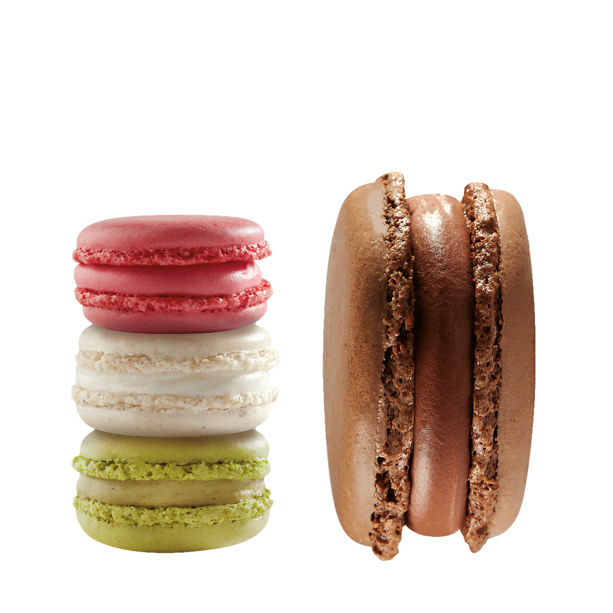 Three macarons are in a vertical stack (one green, one white, one pink), and one large chocolate macaron stands on its end next to them. All the macarons are isolated on a gray background.