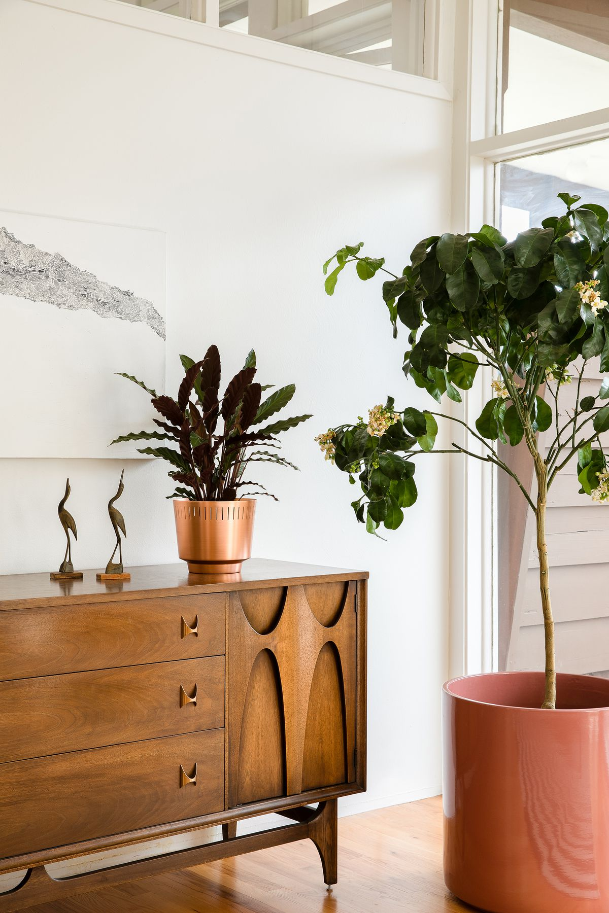 A wooden dresser sits against a white wall. There is a large houseplant on the floor next to the dresser in a pink colored planter. On the dresser is another houseplant in a copper planter.