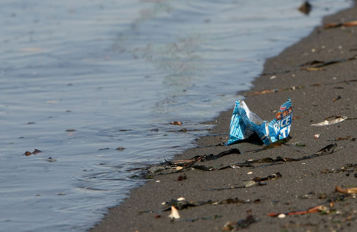 San Francisco Bay Pollution Levels Threaten Clean Water Act Standards