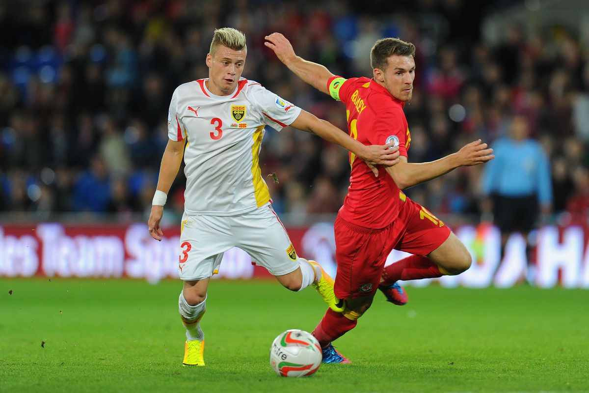 Wales v Macedonia - FIFA 2014 World Cup Qualifier