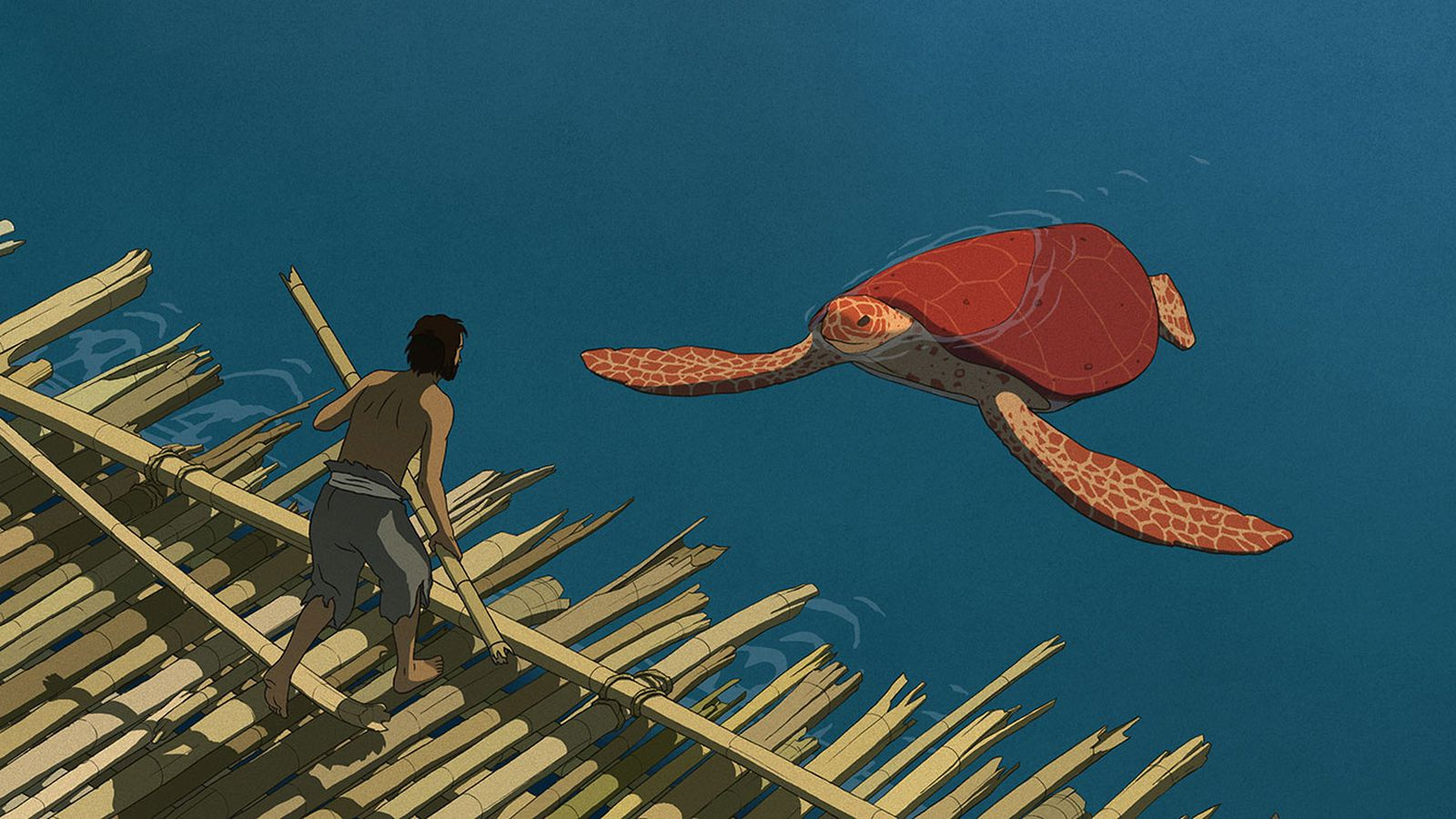 The Red Turtle Is A Breathtaking Example Of What Animation Is Capable Of Achieving Vox