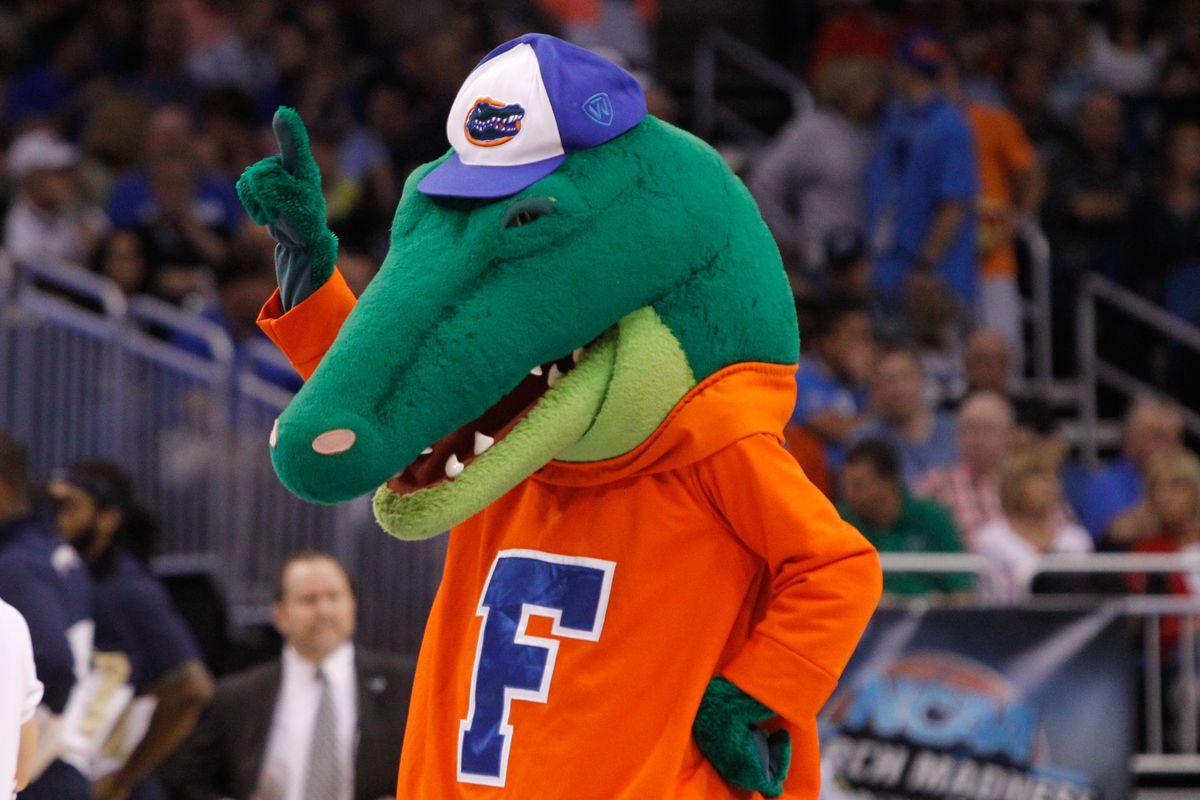 Let's be honest: Florida's mascot is goofy looking.