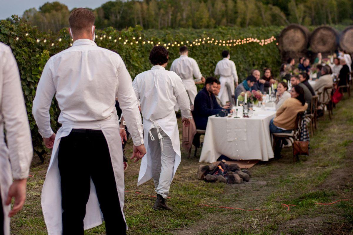 waiters in vineyard