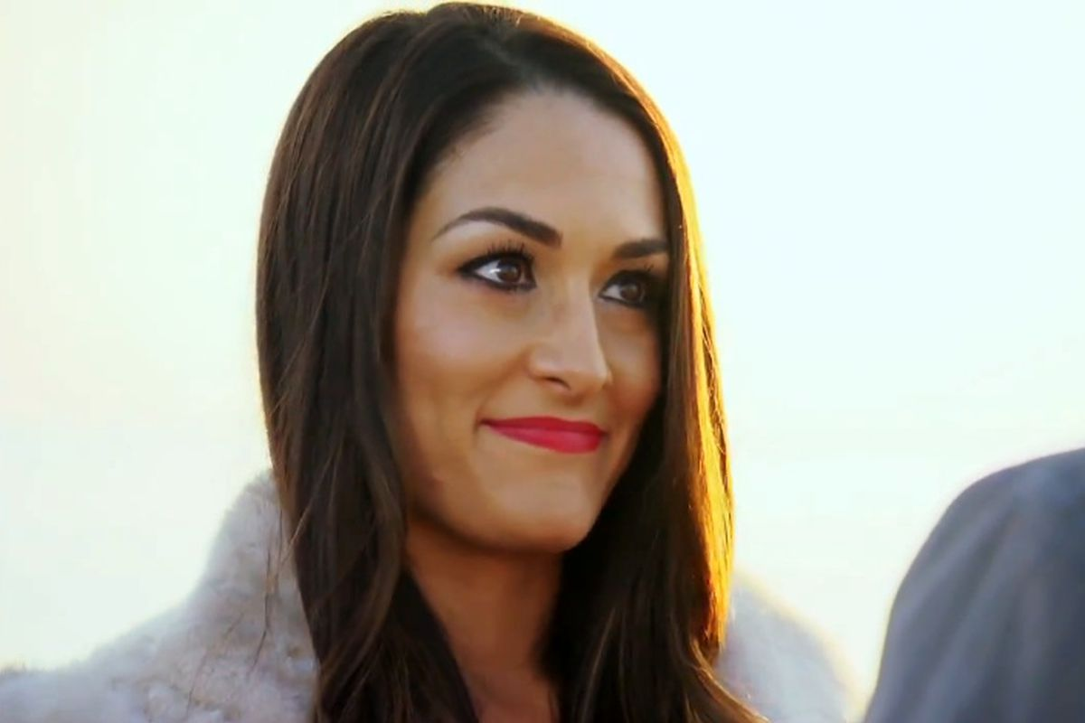 Nikki Bella Wants To Do A Storyline With John Cena On Wwe