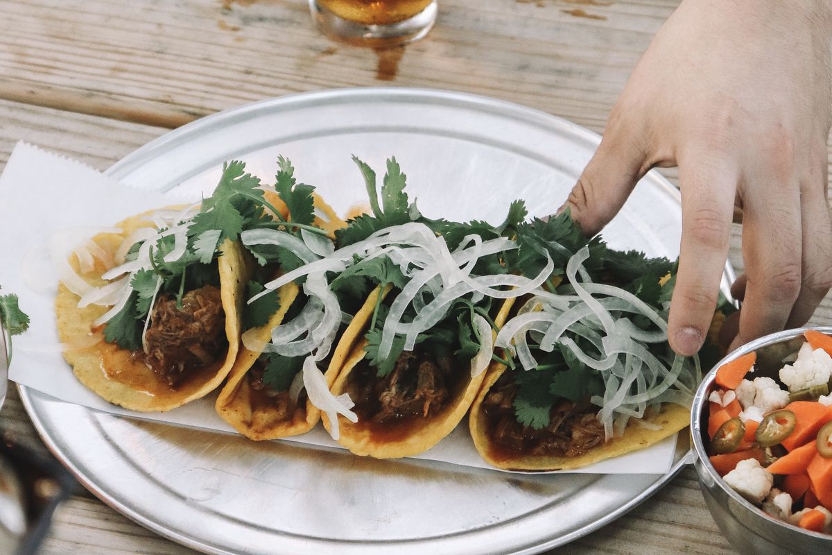 a white plate holding four meat-filled tacos topped with cilantro and onions