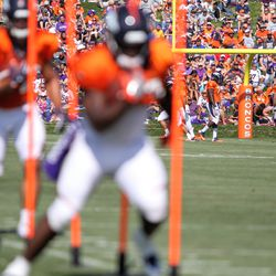 Fans watch day seven of Broncos Camp.