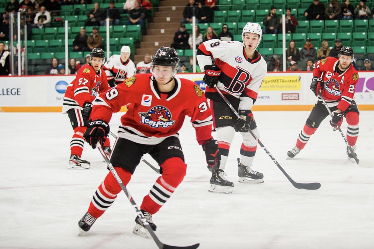 Rockford IceHogs vs. Belleville Senators AHL 2019: Score, recap, highlights