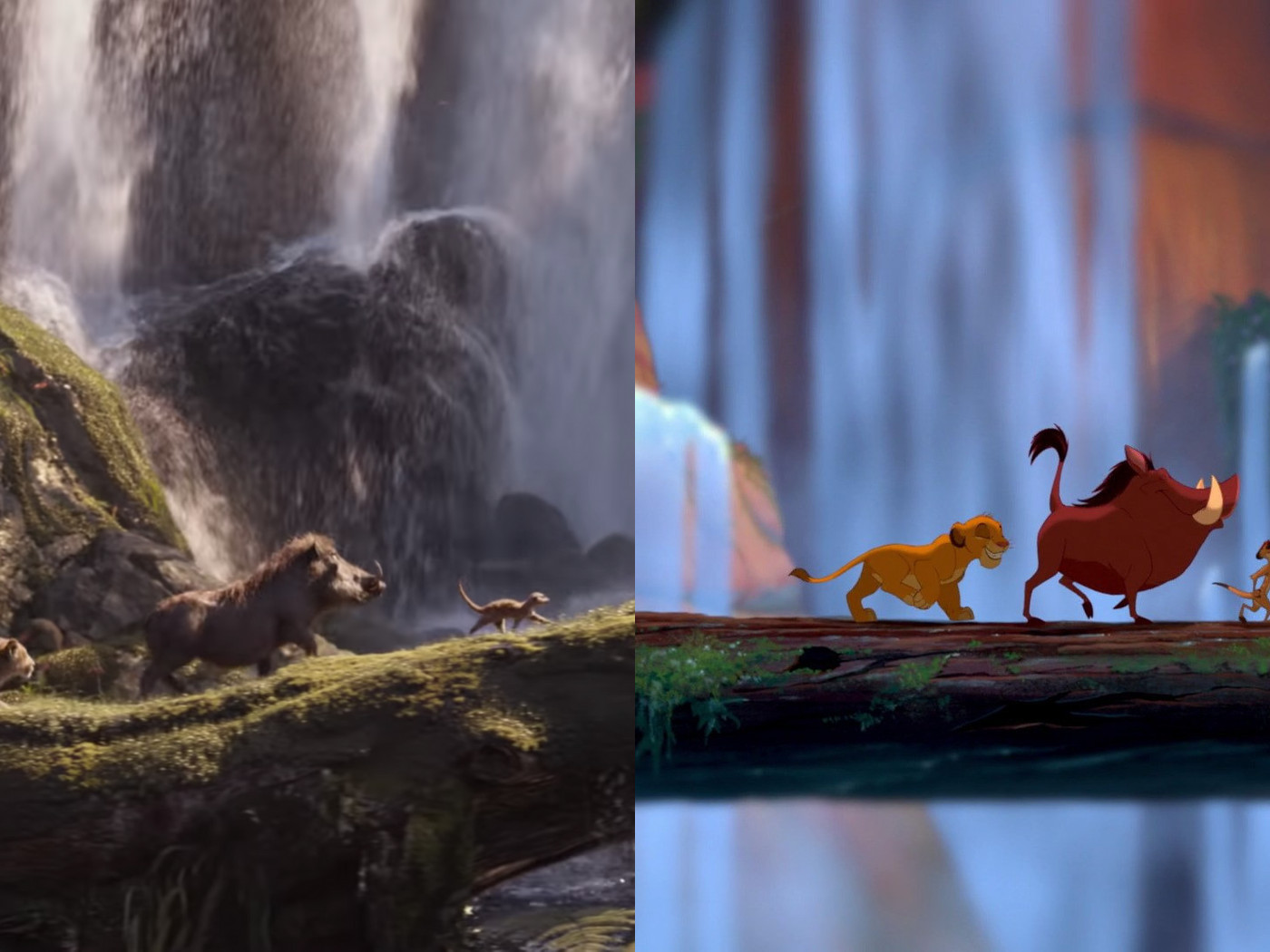 A side by side comparison of the new Lion King with the 20 ...