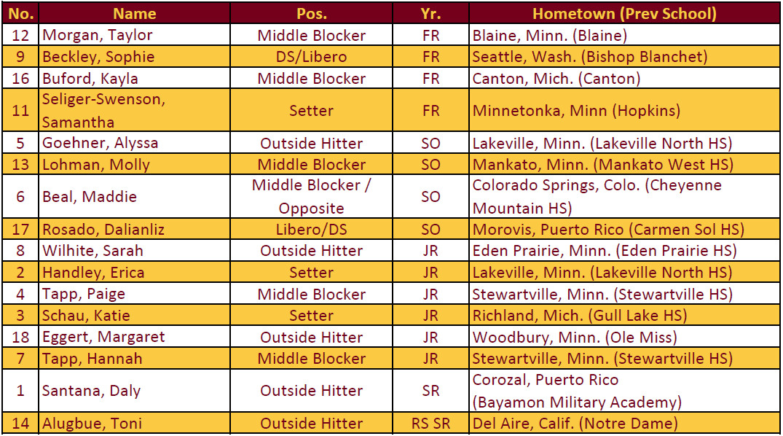2015 Minnesota Volleyball Roster