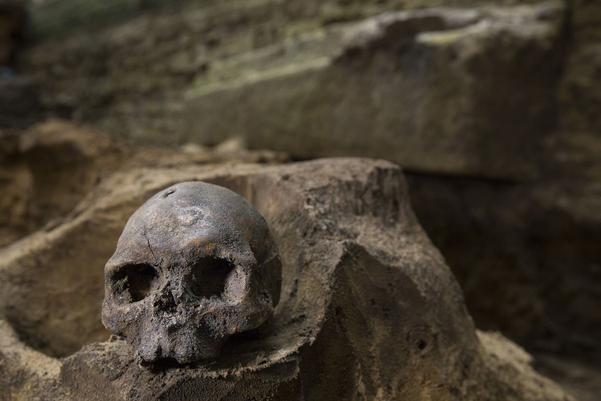 Neanderthal DNA can influence everything from your skin to